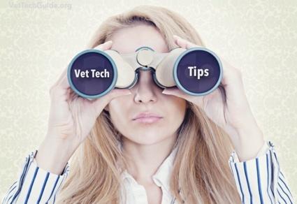 vet tech tips
