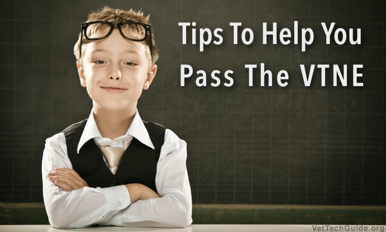 tips to pass the vtne