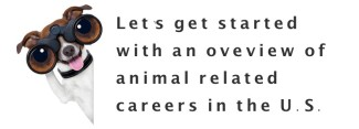 jobs with animals in us