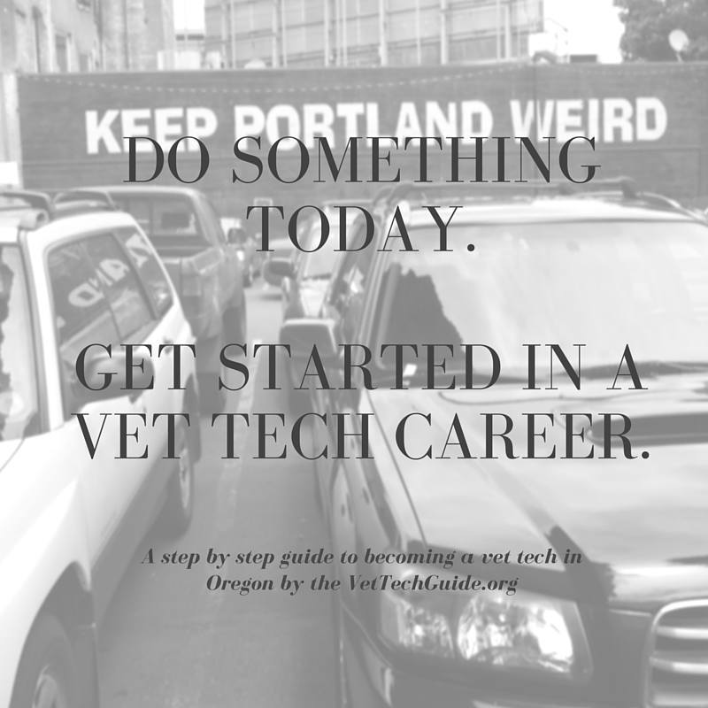 Do something today. Get Started in A Vet tech Career in Oregon