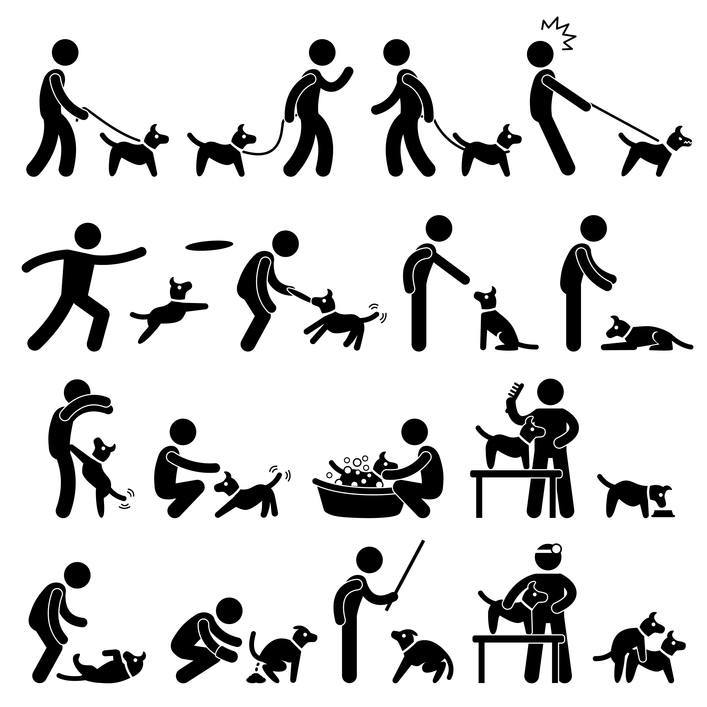 Veterinary Behavior Technician