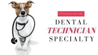 dental technician specialty