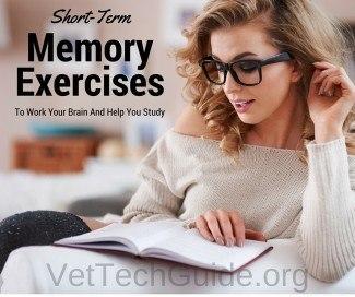 short term memory exercises