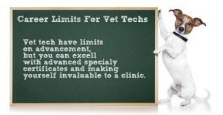 vet tech career