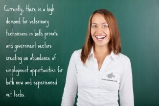 vet tech career outlook