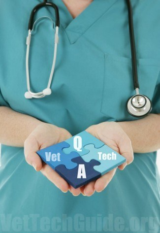 vet tech questions and answers