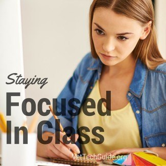 Study and school tips for vet tech studends