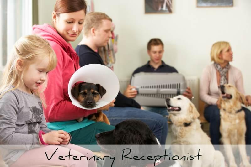 veterinary receptionist