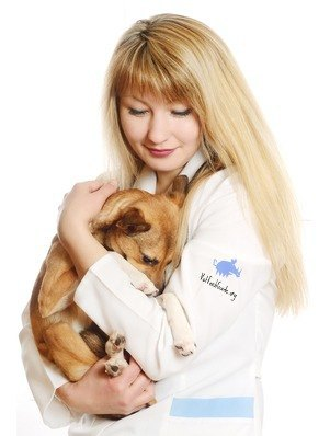 aring veterinarian holding a puppy
